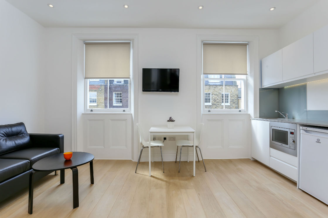 Open plan reception room in one bedroom flat in Kings Cross